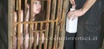 La tigre in gabbia